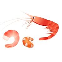 えびのゆで方の簡単方法は?ちらし寿司や生春巻きに最適!
