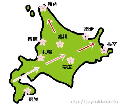 hokkaidousakura3