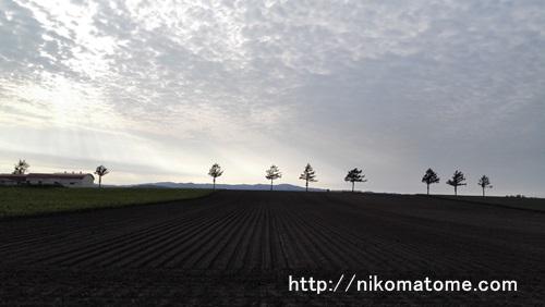北海道の景色!メルヘンの丘とはいったい?!